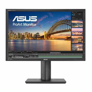 Asus ProArt PA248Q (90LMG0150Q00081C) - 24,1 Zoll, WUXGA (1920 x 1200), IPS-Panel, 60Hz, 6ms, 300cd/m²