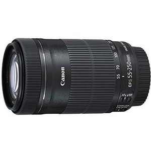 Canon 55 - 250 mm / F 4,0 - 5,6 EF-S IS STM