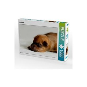 Calvendo Hundewelpe 1000 Teile Puzzle quer 640x480mm, Hultsch Heike 7287682