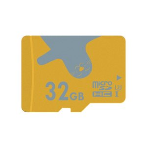 AlertSeal 32GB UHS-3 Micro SDHC Memory Card for Phone,Tablet and PCs - with Adapter (U3-32GB)