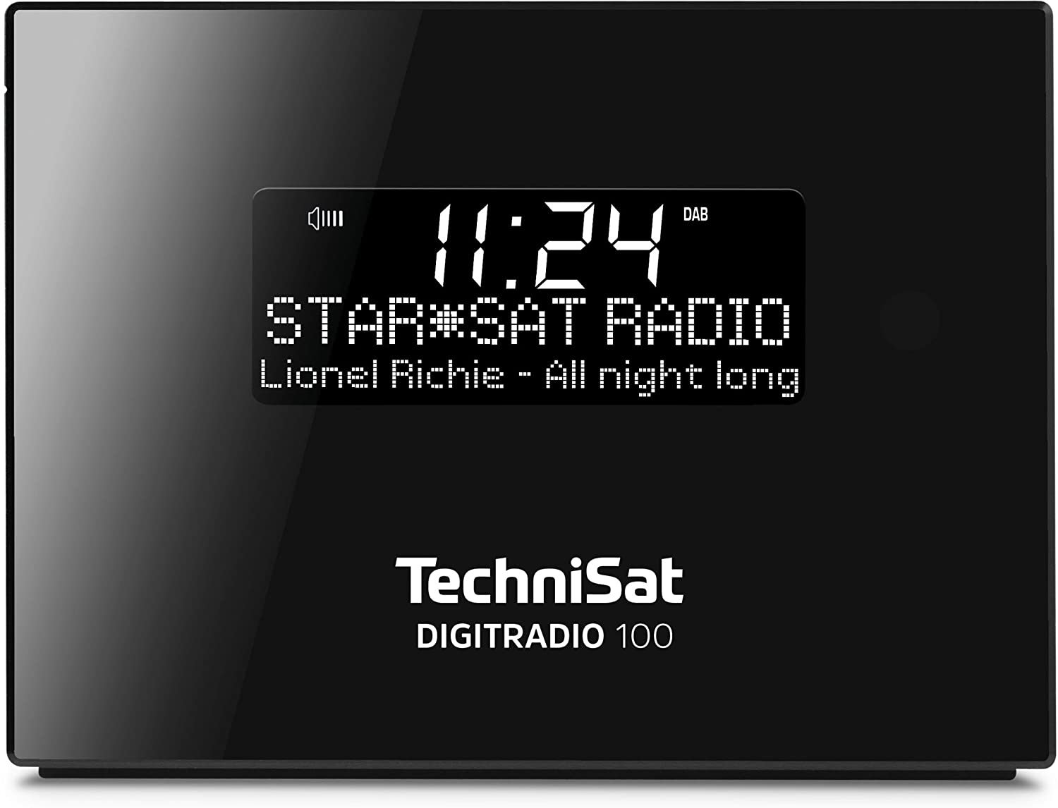 technisat digitradio 100 test radio. Black Bedroom Furniture Sets. Home Design Ideas